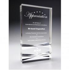 Acrylic Awards-AMA-28