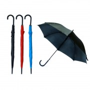 Prescient Auto Open Straight Umbrella
